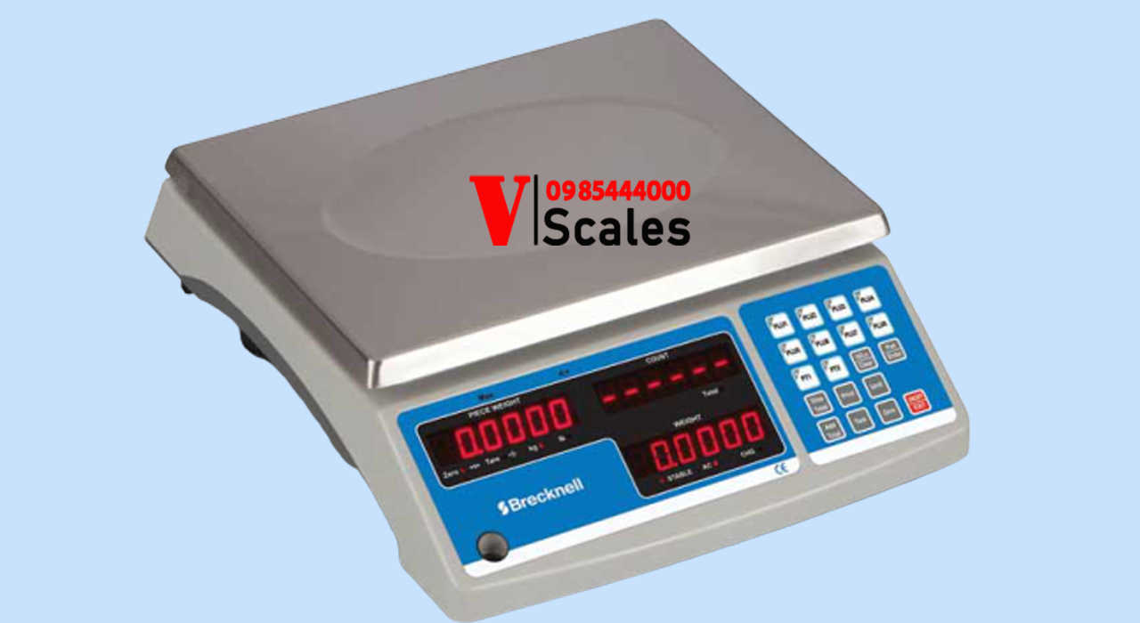 can-tinh-tien-dien-tu-brecknell-scale